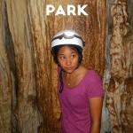 Tips for visiting Barra Honda National Park