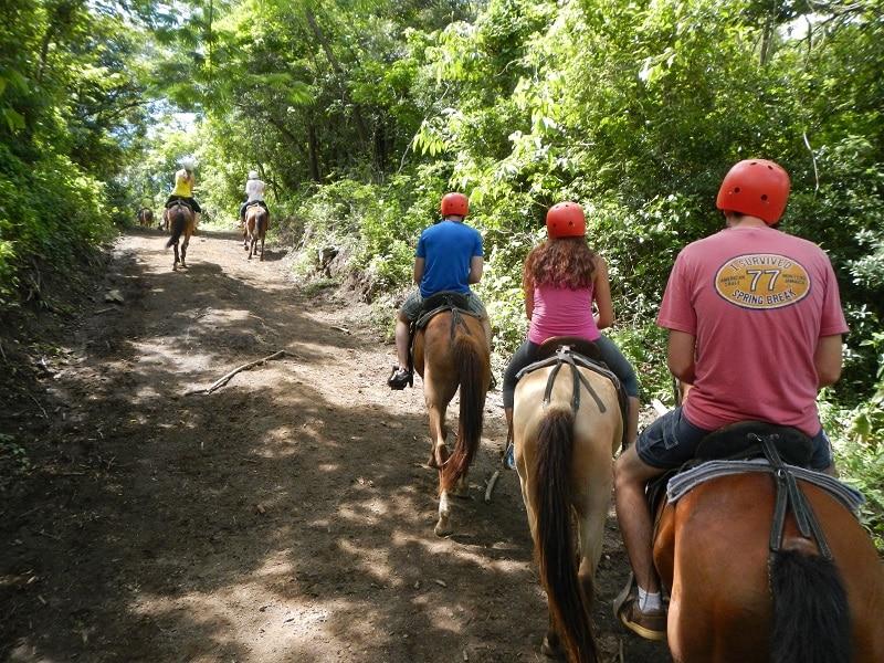 buena vista combo tour horseback riding