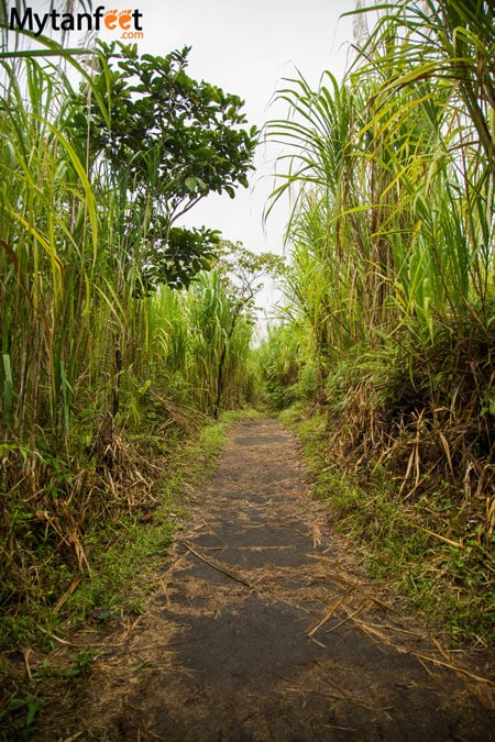 Arenal Volcano National Park - hiking the national park