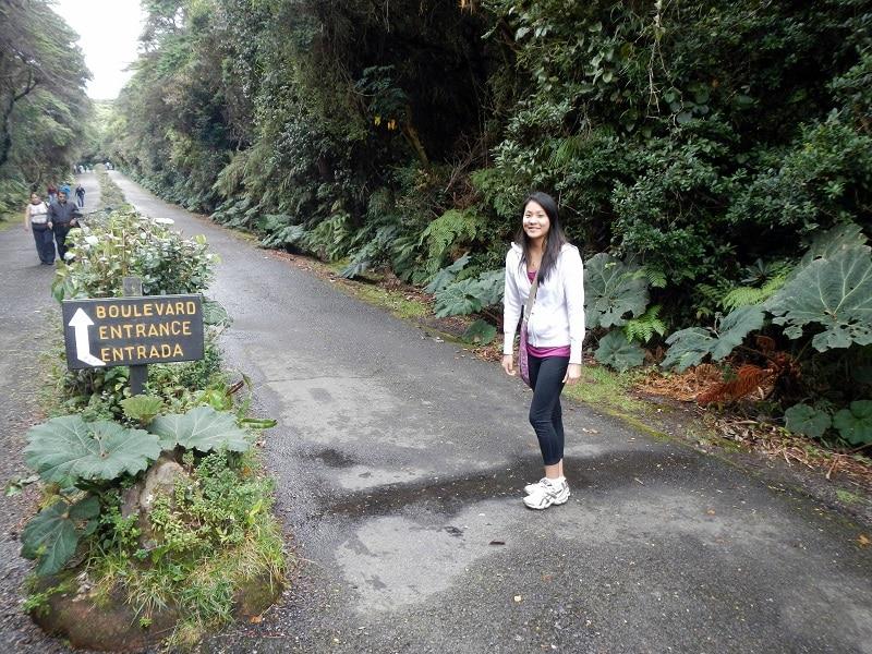 poas volcano national park view