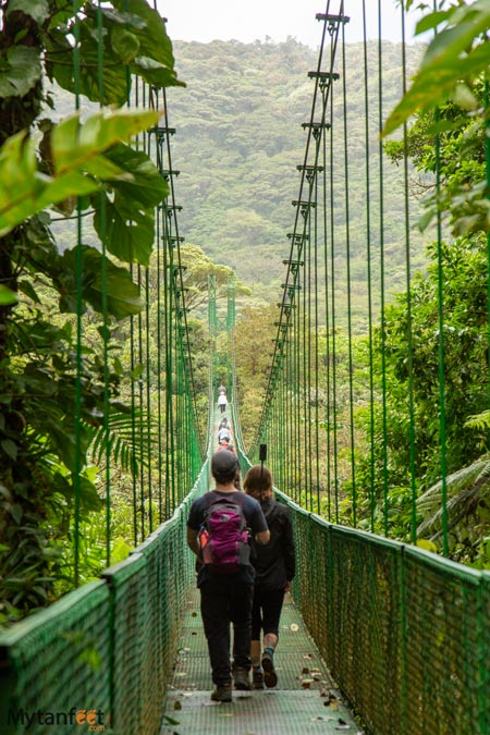 Selvatura park suspension bridges