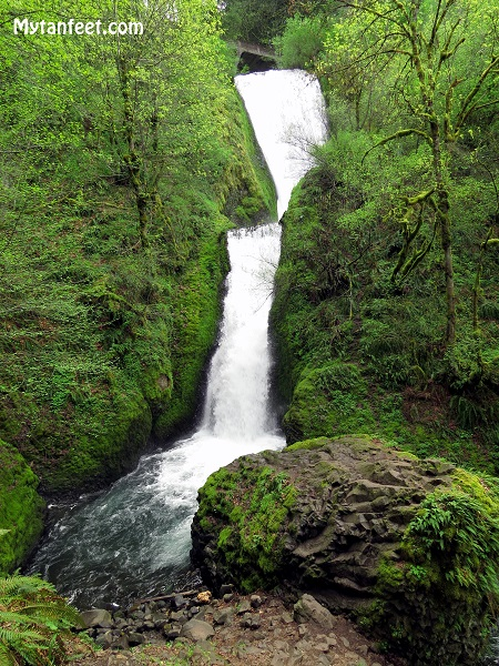 columbia river gorge national scenic area - bridal veil falls