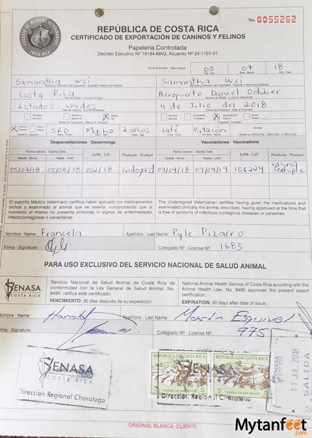 Bringing your dog to Costa Rica from USA - Costa Rica health certificate