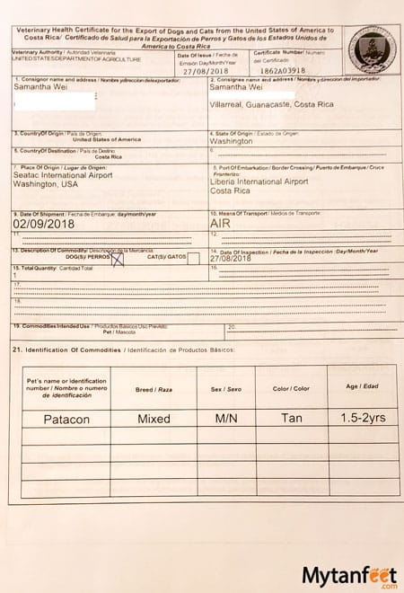 bringing dog to Costa Rica from USA - health certificate