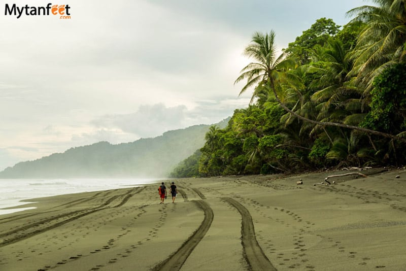 things to do in costa rica - Corcovado national park