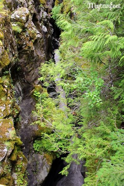 Mount Rainier National Park - box canyon trail