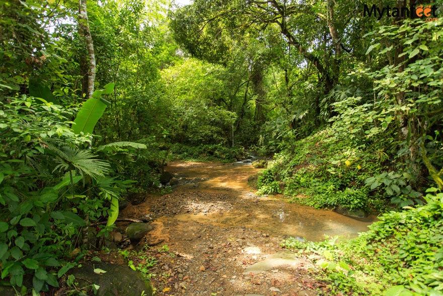 Nauyaca Waterfalls Trail