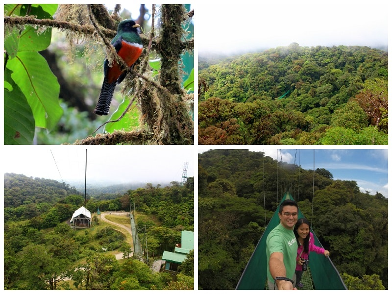 One week Costa Rica itinerary - Monteverde Cloud Forest