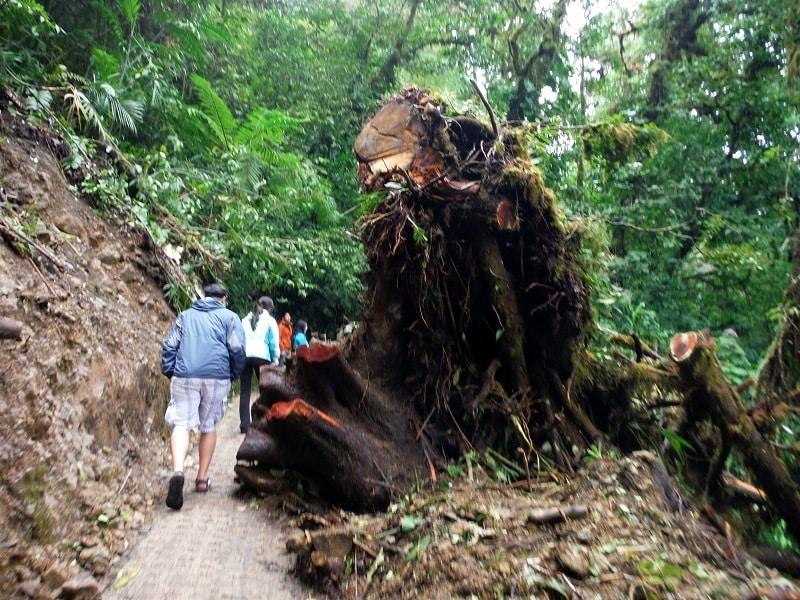 adventure activities in costa rica - hiking