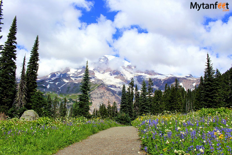 Things to do in Seattle - Mount Rainier day trip