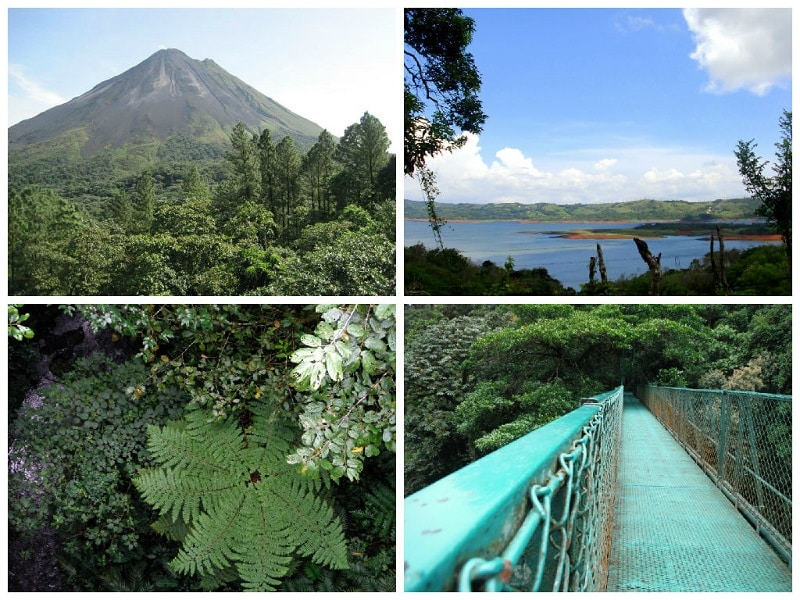 best day trips from playas del coco monteverde and arenal