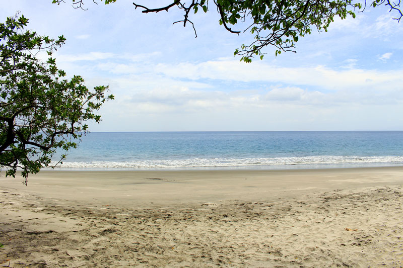 playa cabuyal in guanacaste view
