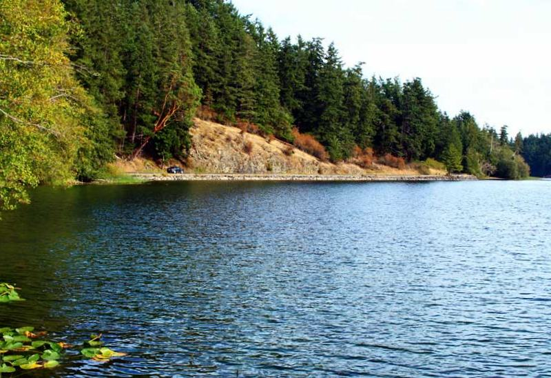 things to do on orcas island go for a scenic drive