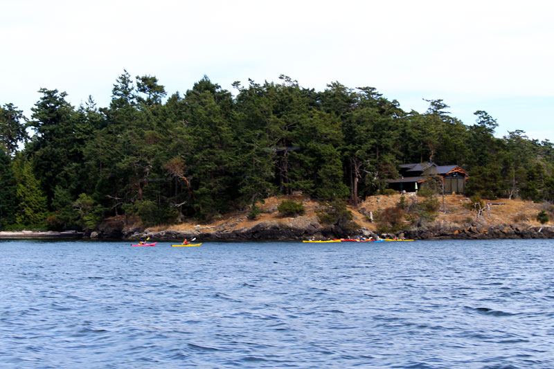 things to do on orcas island sea kayak