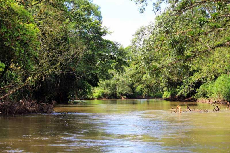 Rio Frio Safari Float