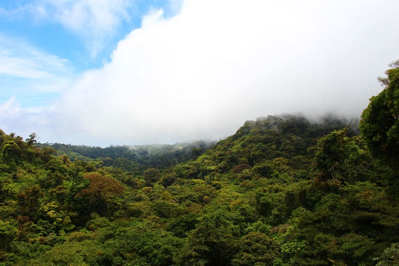 2 week costa rica itinerary - Monteverde Cloud Forest