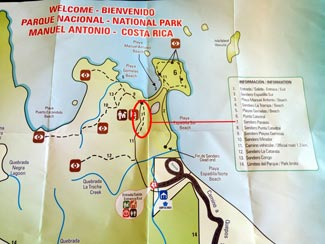 The complete guide to hiking Manuel Antonio National Park - sendero el perezoso