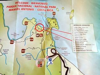The complete guide to hiking Manuel Antonio National Park - sendero playa gemelas