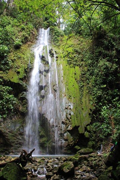 wildlife watching hike at matapalo - waterfall