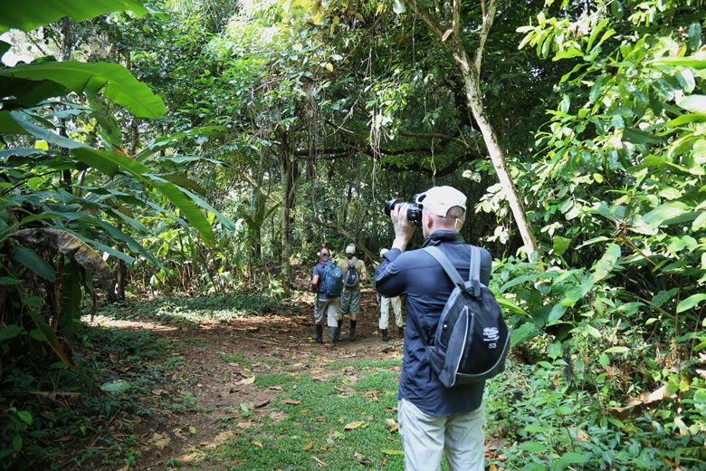 San Pedrillo and Sirena Station in Corcovado National Park - San Pedrillo hike