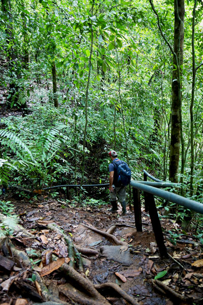 San Pedrillo and Sirena Station in Corcovado National Park - waterfall San Pedrillo trail