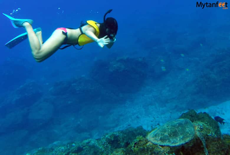 things to do in uvita and dominical - cano island snorkeling