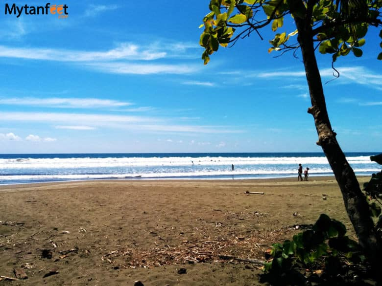 things to do in uvita and dominical - playa linda