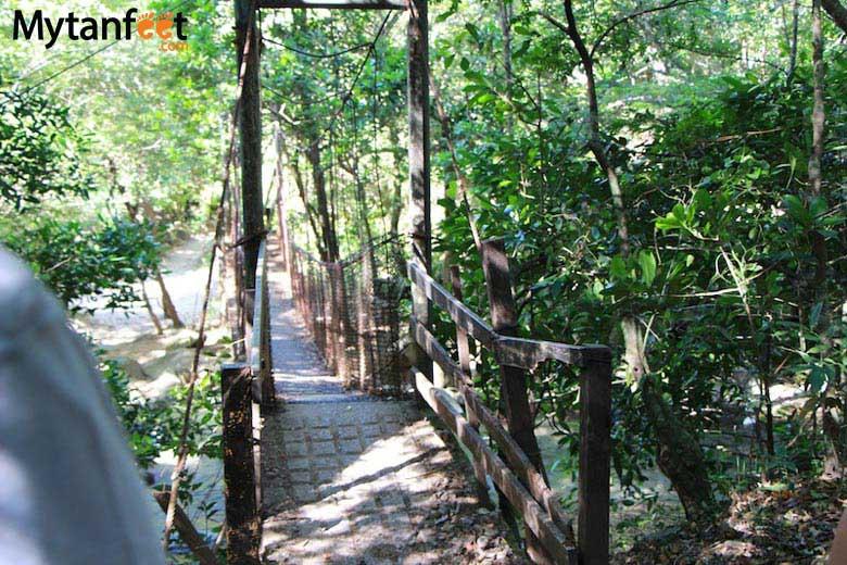 Rincon de la Vieja National Park - boiling mud pots hike
