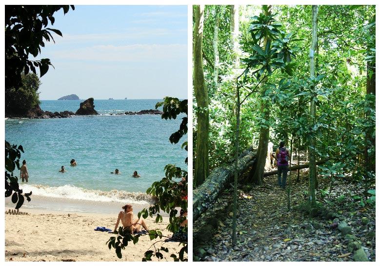 things to do in Playa Jaco - manuel antonio and carara national park