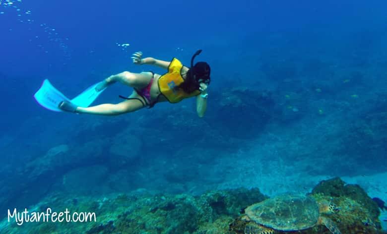 snorkeling at cano island - activity near drake bay