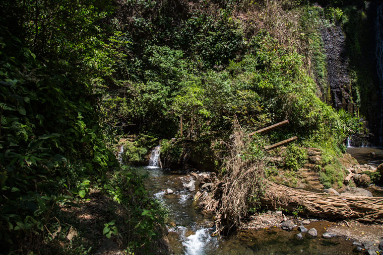 The trail to the second Los Chorros waterfalls