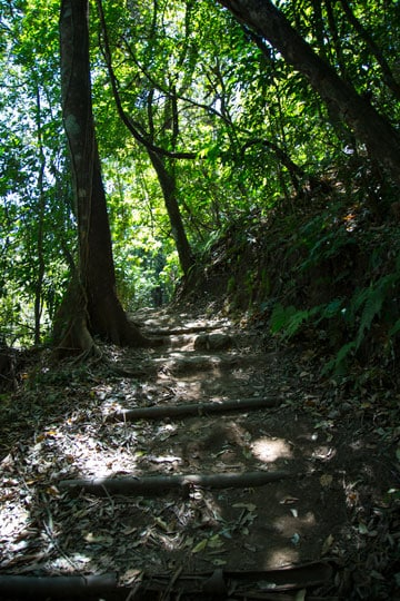 Trail to Los Chorros Waterfalls in Grecia