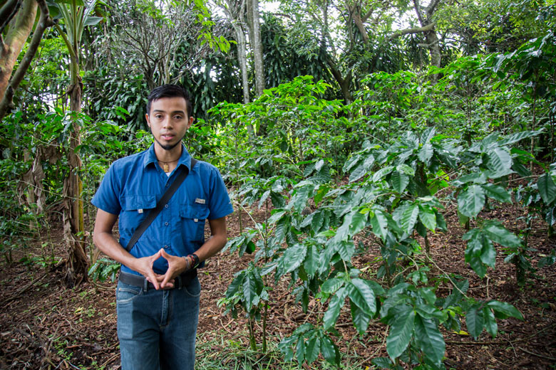 Finca Rosa Blanca - Coffee Tour