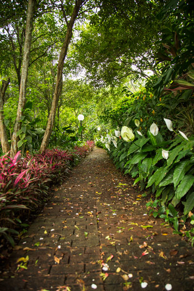 Hotel bougainvillea in Heredia - Garden trails