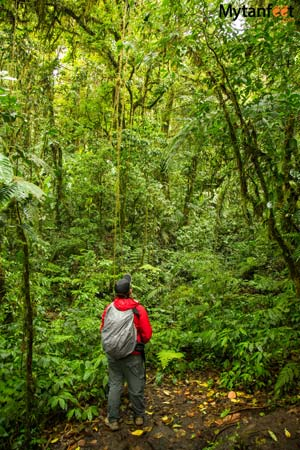 Packing list for Costa Rica - Monteverde