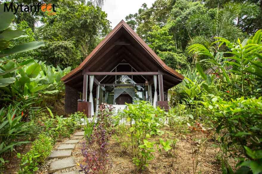 Oxygen Jungle Villas - Ocean view villa