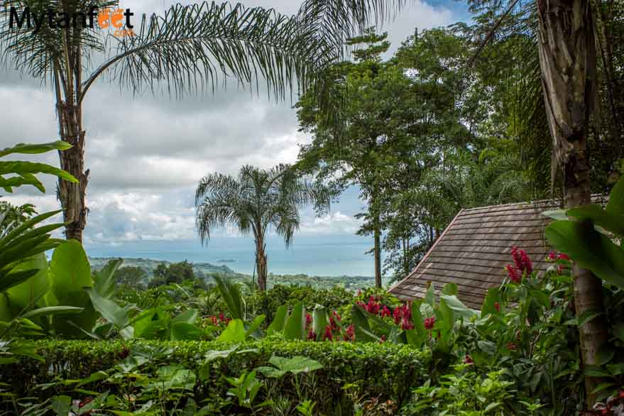 Oxygen Jungle Villas - ocean view