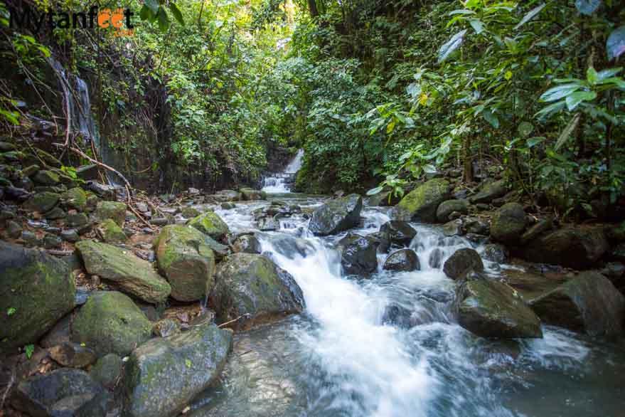 Oxygen Jungle Villas - waterfall