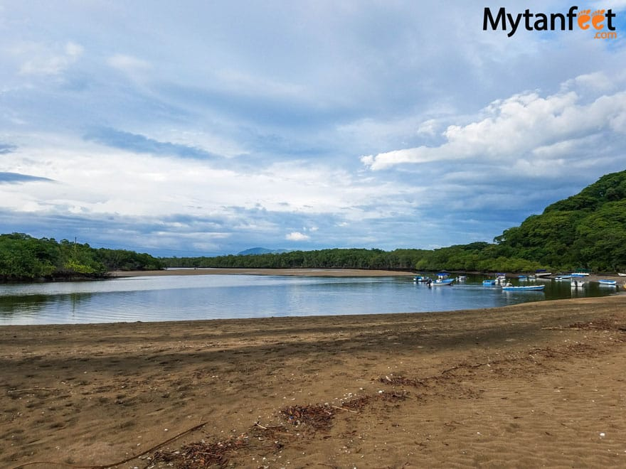 Things to do in Tamarindo - mangrove and estuary boat ride