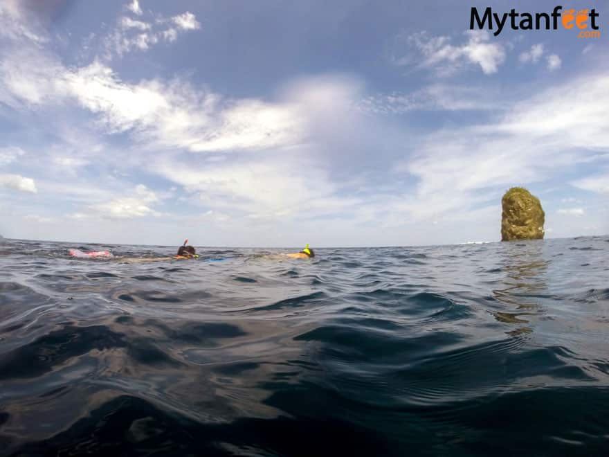 things to do in Guanacaste - snorkeling and scuba diving