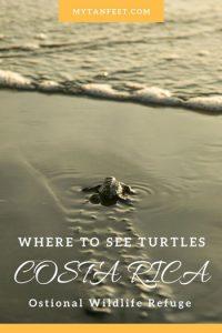 Ostional Wildilfe Refuge Costa Rica