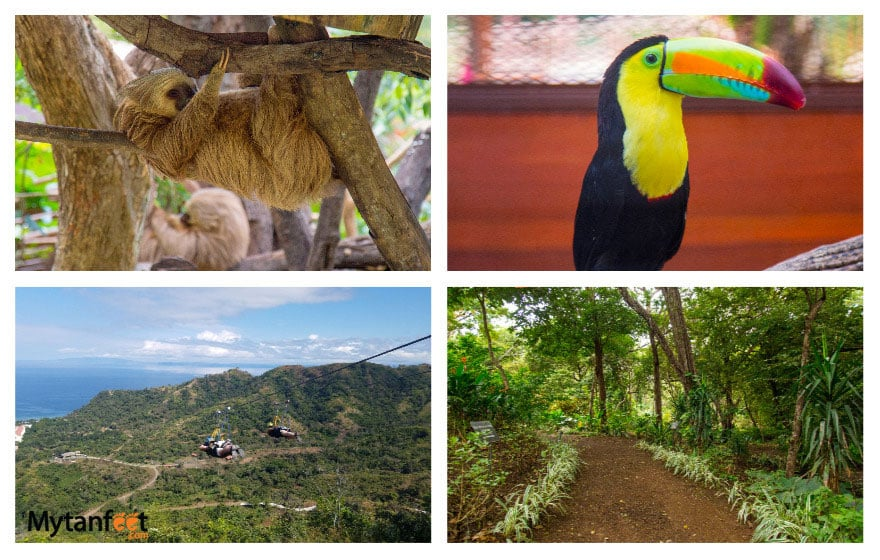 Things to do in Playa Conchal - Diamante eco adventure park
