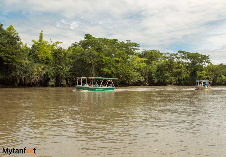 Things to do in Playa Conchal - Palo Verde National park