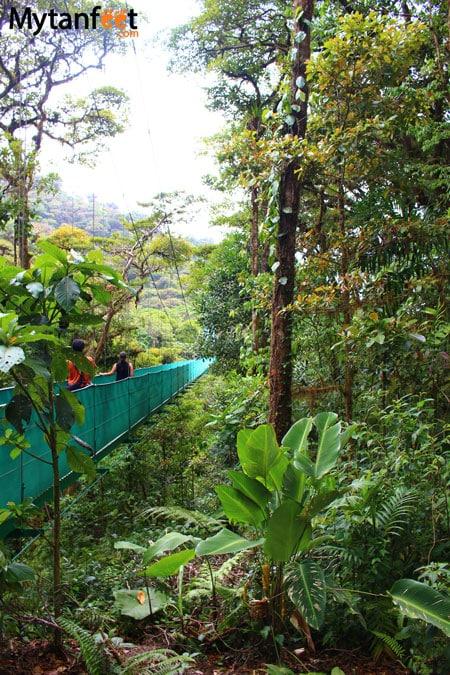 Sky adventures in Monteverde - hanging bridges