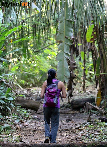 cheap things to do in Costa Rica - hike on your own