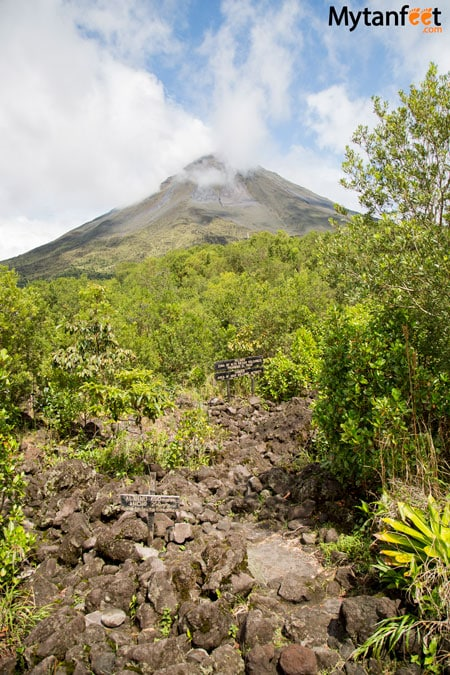 costa rica monkey tours - arenal volcano national park