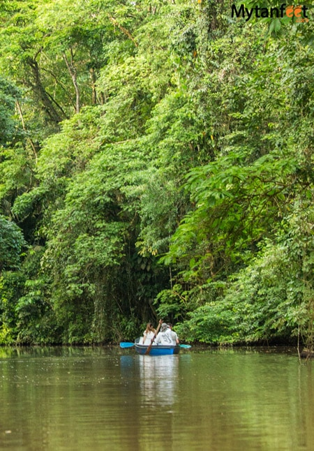 Tortuguero national park Canals