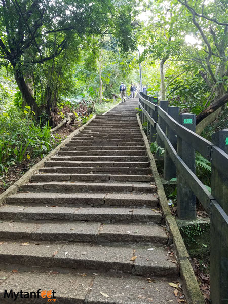 Hiking Elephant Mountain in Taipei - steps