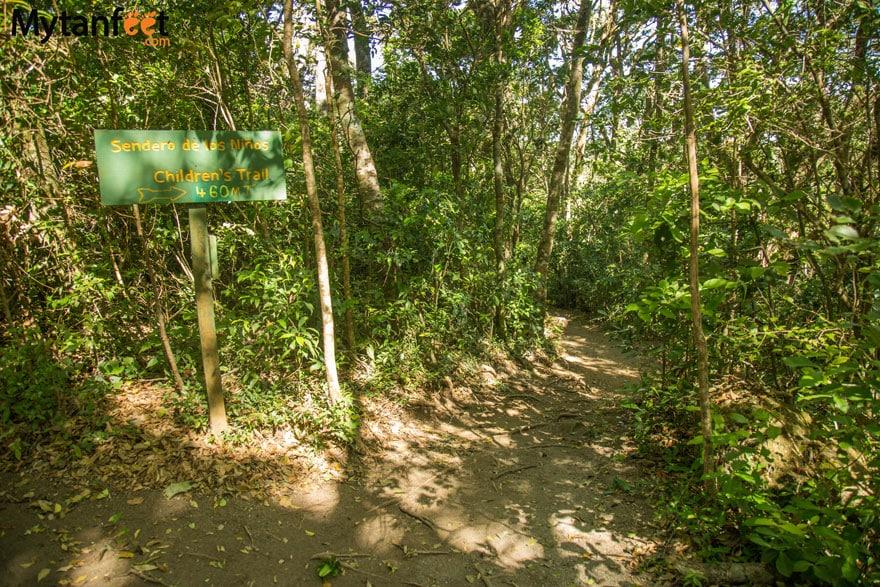 Children's Eternal Rainforest - Bajos del Tigre hiking trail sendero de los ninos