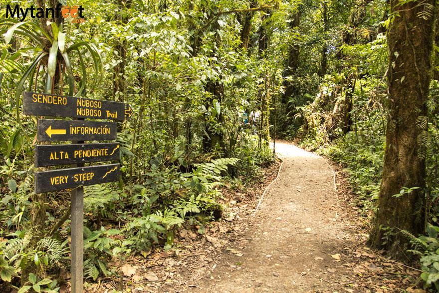 Hiking Monteverde Cloud Forest Reserve - sendero nubloso start